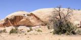 Navajo Sandstone _DSC3076.jpg