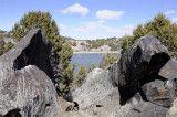 Rocks Trees and The Snake River at Massacre Rocks SP _DSC1292.jpg