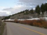 spring - west buckskin road P4230132.jpg