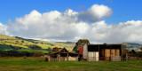 Farm in Trafalgar ~