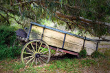 Broken wagon ~