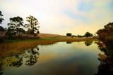Evening Lake reflections