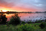 Floodwater sunset