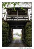 T.J. Evans Panhandle Trail_7957