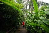 Eden Project 15