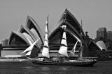DSC_9514.2 Stad Amsterdam  Sydney Opera House BW sm .jpg
