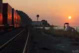 Freight Rolling through Sunset