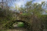 Study on the Old Stone Bridge