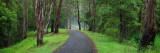 Hinterland Track