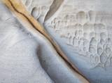Shelly Beach Detail
