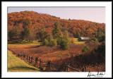 Blue Ridge Postcard Morning