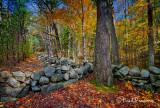 _MG_9663  Ausbon-Sargent Land Trust   -  Enroth  #3