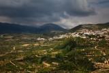 IMG_0470 - Golan Heights