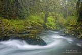 Abiqua stream