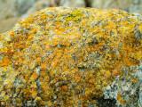 A yellow rock