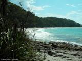 Kelly's Beach 2