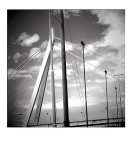 Bridge near Rotterdam