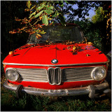 A red BMW with red apples