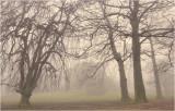 Misty Humelgem Castle