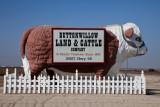 Buttonwillow, California