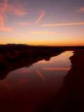 Newberry Springs puddle reflection.jpg