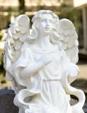 angel head Sonoma.jpg