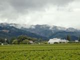 White barn windmill Oakdale.jpg