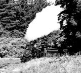 steam engine coming out of trees b&w