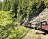 train curve open air car.jpg