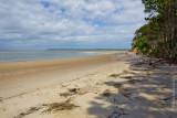 M4_02746 - Beach at Cumberland Island