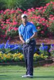 1D_84283 - Tiger Woods