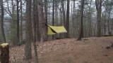 My hamock & tarp.  No leaves yet