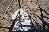 Shuckstack steps