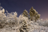 Frosty Desember