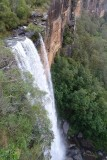 Fitzroy Falls - see the video