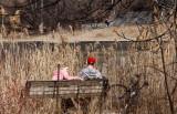 Spring on Grenadier Pond