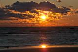 Sunset and bird - Town Beach, Old Saybrook