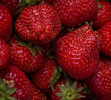 Farmer's Market - Irish strawberries