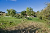 Avon 47  5198  From upper pasture