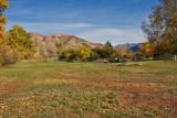 Avon 138  5498  Lower pasture