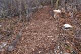trail 21  5718 New Trail