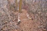 trail 7  5703