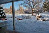 Jan 24 snow 6140.jpg