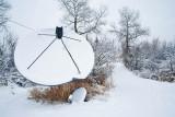 Snow 6261