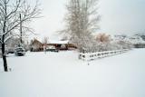 Snow 6267