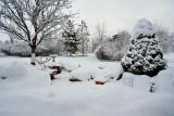 Snow 6270