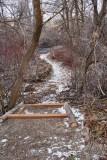 trail 6298