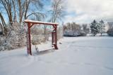 Snow  6321