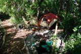 6911  tent