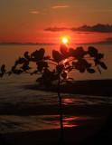 La Playa Blanca, Osa Peninsula